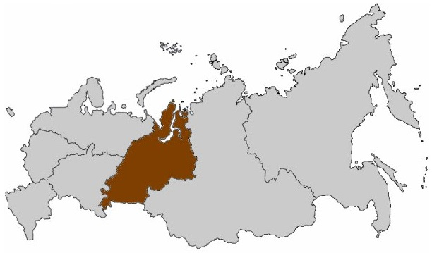 2012_n3_volkov_logo